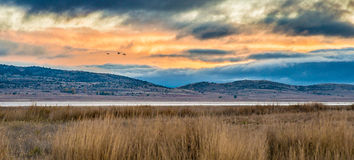 Cranes migrating over Gallocanta Lagoon in, Spain. Cranes migrating over Gallocanta Lagoon in Zaragoza, Spain Royalty Free Stock Image