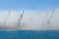 Cranes in the mist Royalty Free Stock Photos