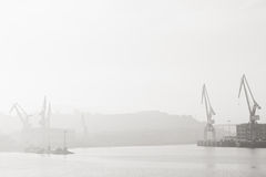 Cranes in Nervion River Stock Images