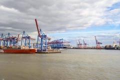 Cranes o porto de Hamburgo Fotos de Stock Royalty Free