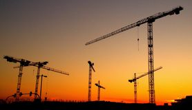 Cranes in an orange sunset royalty free stock images