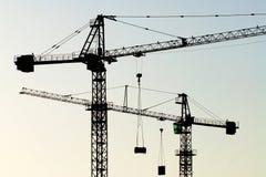 Cranes orizzontale Immagini Stock Libere da Diritti