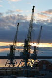 Cranes over the river in the port Royalty Free Stock Photography