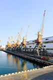 Cranes in the port. Ready to unload the cargo Royalty Free Stock Image