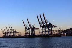 Cranes in the port of Hamburg at dusk Stock Images