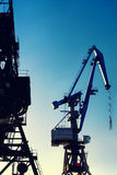 Cranes at the port for loading on a background of the sun and sk Stock Image