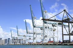 CRANES IN THE PORT OF MIAMI Stock Photography