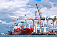 Cranes at port of Tauranga Royalty Free Stock Photos