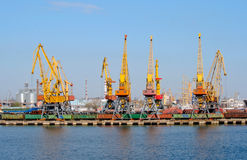 Cranes in the port Stock Photography