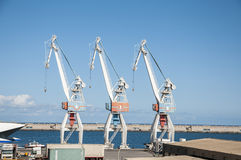 Cranes of the port Royalty Free Stock Image