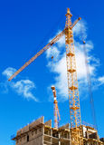Cranes on project Stock Image