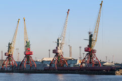 Cranes in seaport. Cranes in trade seaport of Kaliningrad Royalty Free Stock Images