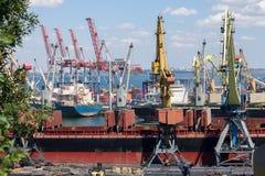 Cranes in seaport. Stock Image