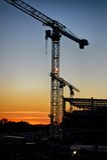 Cranes in silhouette Stock Image