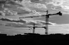 Cranes silhouette Stock Images