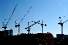 Cranes on the Skyline Royalty Free Stock Image