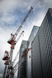 Cranes and skyscrapers Stock Image