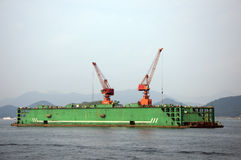 Cranes, South Korea Stock Photography