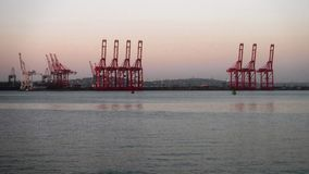 Cranes at sunrise Stock Image