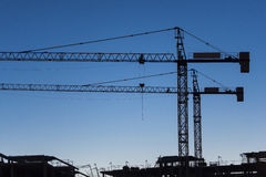 Cranes at sunset Royalty Free Stock Image