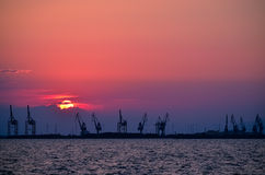 Cranes at sunset Royalty Free Stock Images