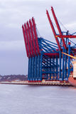 Cranes at ther Container Terminal Royalty Free Stock Photography