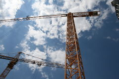 Cranes Stock Photography