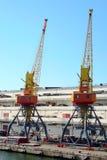Cranes Stock Image