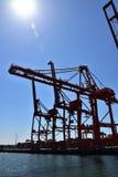 Cranes at Vancouver bay royalty free stock image