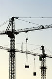Cranes vertical Royalty Free Stock Photography