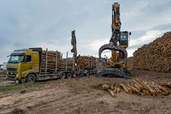 Cranes at warehouse territory logs are unloaded from the truck. Stock Image