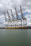 Cranes on waterfront of a shipping container terminal Royalty Free Stock Photography
