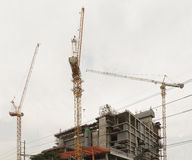 Cranes. Royalty Free Stock Photography