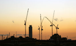 Cranes working over sunset Royalty Free Stock Images