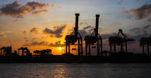 Cranes working at the port  over sunrise panorama Royalty Free Stock Photo