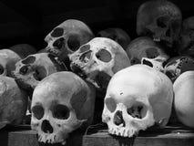 Crani dei campi di uccisione Fotografia Stock Libera da Diritti