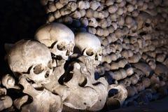 crani del mucchio delle ossa Fotografia Stock