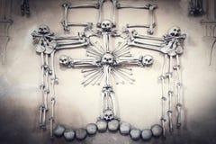 Crani ed ossa coperti nel lotto della polvere del resti umano terrificante nello scuro Fondo scuro astratto che simbolizza morte, fotografia stock