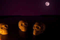 Crani, fondo di Halloween Fotografia Stock