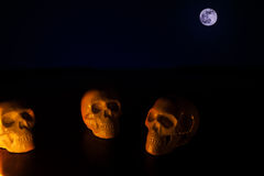 Crani, fondo di Halloween Immagine Stock
