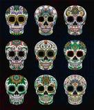 Crani messicani dello zucchero con l'insieme floreale del modello, giorno dell'illustrazione morta di vettore royalty illustrazione gratis