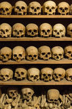 Crani umani Fotografie Stock