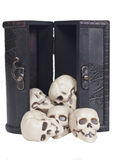 Crani umani in una cassa di legno Immagine Stock