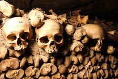 Crani in una catacomba Immagine Stock Libera da Diritti