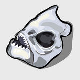 Cranial bone fish, head ancient toothy creatures. Vector illustration Royalty Free Stock Photography