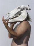Cranio 02 del cavallo della holding dell'uomo anziano illustrazione di stock