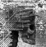 Cranio Immagini Stock Libere da Diritti