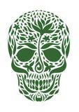 Cranio 2 10 Immagini Stock