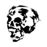 cranio illustrazione vettoriale