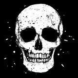 Cranio bianco illustrazione di stock